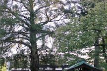 Iwado Hachiman Shrine, Komae, Japan