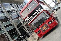 Buffalo Double Decker Bus Tours, Buffalo, United States