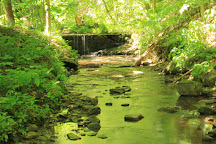Buttermilk Falls Natural Area, New Florence, United States