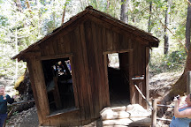 The Oregon Vortex House of Mystery, Gold Hill, United States