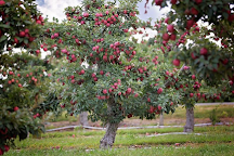 Lawrence Farms Orchards, Newburgh, United States