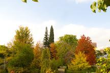 Royal Botanic Garden (Real Jardin Botanico), Madrid, Spain
