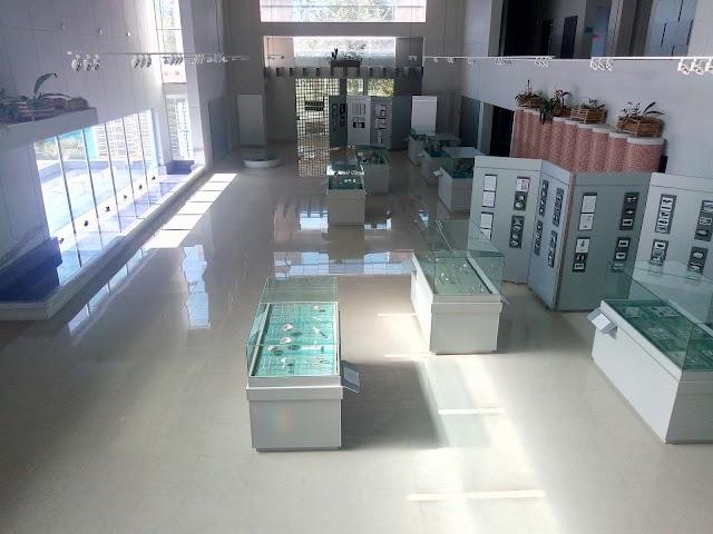 Museo Regional Del Mundo Maya