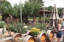 Platypus Wine Tours, Napa, United States