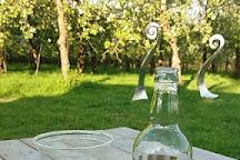 Dorset Nectar Cider, Bridport, United Kingdom