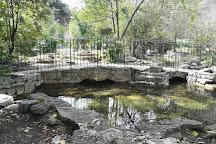 Parco Nemorense o Virlgiliano, Rome, Italy
