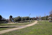 Villa Romana de Almenara-Puras, Puras, Spain