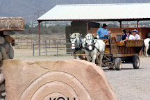 KOLI Equestrian Center, Chandler, United States