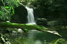 Vazhvanthol Waterfalls, Thiruvananthapuram (Trivandrum), India