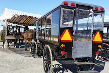 AAA Buggy Rides, Intercourse, United States
