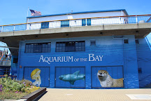 Aquarium of the Bay, San Francisco, United States