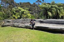 Gumdiggers Park, Awanui, New Zealand