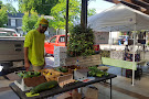 Colleton  Museum and Farmers Market