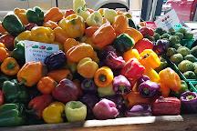 Fulton Street Farmers Market, Grand Rapids, United States