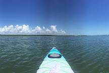 Flipper Finders Boat & Sea Kayak Tour Co., Folly Beach, United States