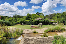 Little Rock Zoo, Little Rock, United States