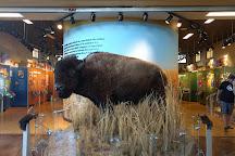 Rocky Mountain Arsenal National Wildlife Refuge, Commerce City, United States