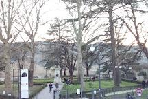 Cattedrale dei Santi Florido e Amanzio, Citta di Castello, Italy
