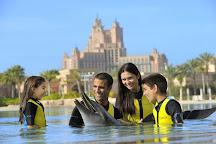Dream Days, Dubai, United Arab Emirates