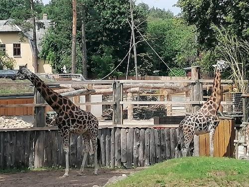 Zooloģiskais dārzs