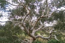 Werribee River Park, Werribee, Australia