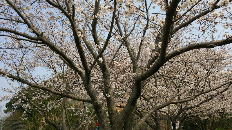青葉台中央公園