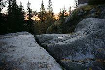 Uhrihalkeama, Koli National Park, Finland