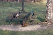 Parc Elfenau, Biel, Switzerland