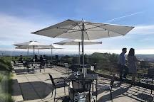 Artesa Vineyards & Winery, Napa, United States