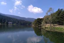 Bolu Golcuk Tabiat Parki, Bolu, Turkey