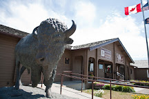 National Buffalo Museum, Jamestown, United States