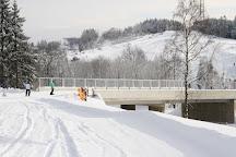 Skiliftkarussell Winterberg, Winterberg, Germany