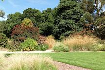 Knoll Gardens, Wimborne Minster, United Kingdom