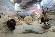 Museo de la Fauna Salvaje, Bonar, Spain