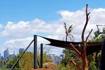 Taronga Zoo, Mosman, Australia