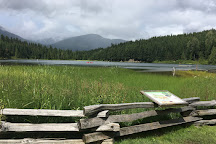 Garibaldi Provincial Park, Brackendale, Canada