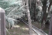 Al Darmaki Fort, Al Ain, United Arab Emirates