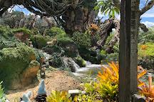 Discovery Island Trails, Orlando, United States