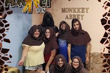 Monkkey Bcn, Barcelona, Spain