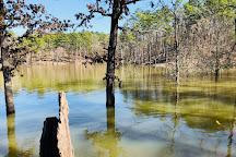 Hochatown State Park, Broken Bow, United States