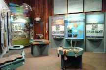 Muscatatuck National Wildlife Refuge, Seymour, United States
