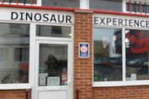 Dinostar - Hull's Dinosaur Experience, Kingston-upon-Hull, United Kingdom