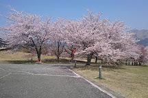 Kannon Sakura, Minamiaso-mura, Japan