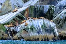 Kenai Fjords National Park, Seward, United States