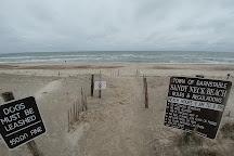 Sandy Neck Beach, Sandwich, United States