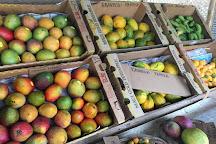 Yee's Orchard & Fruit Stand, Kihei, United States