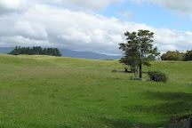 Tongariro River Trail, Turangi, New Zealand