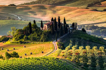 Le Baccanti Cultural Food and Wine Tours, Florence, Italy