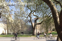 Central Park Tours & Bike Rentals, New York City, United States
