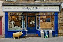 Marilyn & Melrose Lifestyle Boutique, Alnwick, United Kingdom